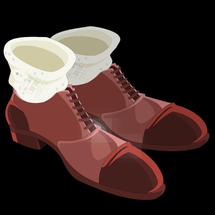 Brown Varnished Shoes