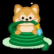Doge4water-shibe