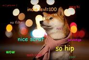 Dogepage3