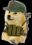 General doge