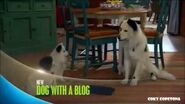 Dog with a Blog - Guess Who's Dating Karl Promo