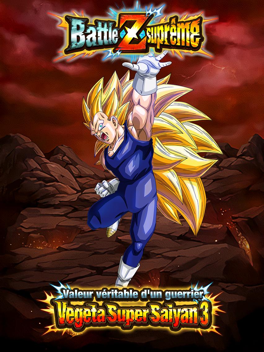 Battle Z suprême - Combats féroces