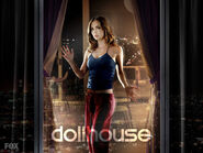 Echo-dollhouse-8201029-1024-768