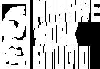 Massive Work Studio.png