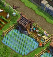 Farm Oriental Level 5