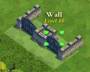 Wall and Gate Level 11