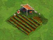 Farm Level 1