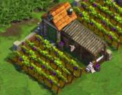 Farm Mediterranean Level 10