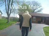 Walrus Man (Video)
