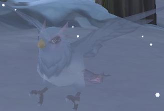 Female Blizzard Bird