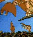 Orange Pterodcatylus Kids