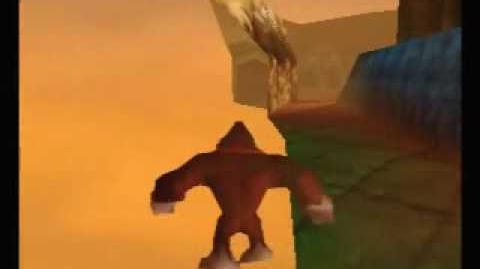 Several_Donkey_Kong_64_Tricks