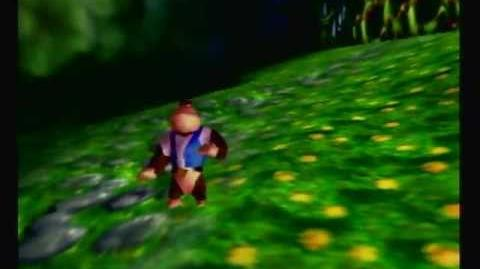 Donkey Kong 64 Angle Skew