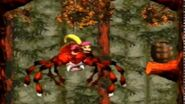 Donkey Kong Country 3 - Arich