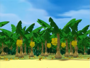DKC TV Series S1 Banana Plantation 2
