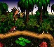 JungleHijinxsletterKSNES