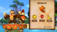 DKCTF Bonus Room Result Screen