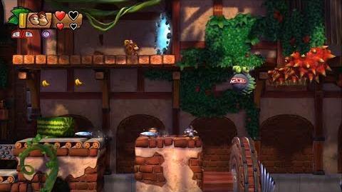 Donkey Kong Country Tropical Freeze - Level 5-3 Unlocking Bonus Stage 5-A