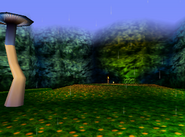Fungi Forest - Garden