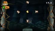 DKCR Level 2 7 Puzzle Piece 3