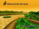 D.K.'s Jungle Parkway