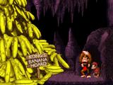 Donkey Kong and Diddy Kong's Banana Hoard