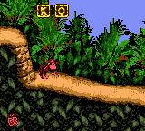 JungleHijinxsletterO