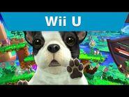 Wii U - Super Smash Bros