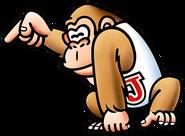 Donkey Kong Country Junior Arcade NES Math Spirit Super Mario Kart Tennis Odyssey Smash Bros Ultimate Tropical Freeze Rare Retro Paon Namco Bandai Nintendo