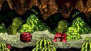 Donkey Kong Country (GBC) - Vine Valley - Bumble B Rumble