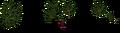 Crab Apple Tree textures