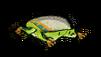 Poison Dartfrog Dead