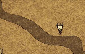 Curvy roads.jpg