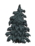 A Lumpy Evergreen