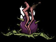 Sleeping Level 3 Snaptooth Seedling