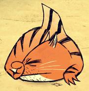 Tiger Shark Sleeping