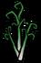 Garlic plant med