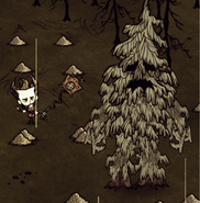 Lumpy Treeguard