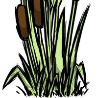 Reeds Don T Starve Wiki Fandom