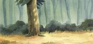 Wes Animated Short Background