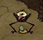 Tallbird laying an Egg
