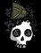 Walter skull