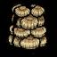 Armadura de concha marina