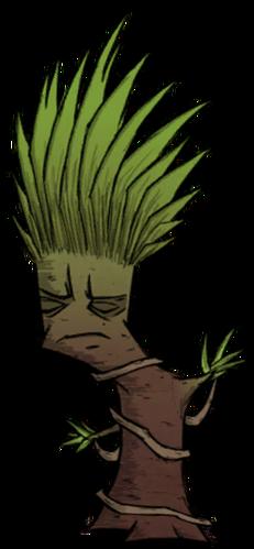 樹/正常的叢林樹