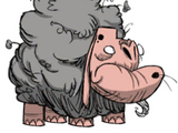 Ovemuco (Ewecus)