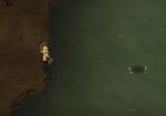 Fishingnet Thrown