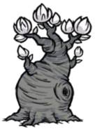 Árvore Lunar (Lune Tree)