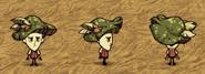 Green Funcap Wilson
