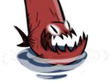 Shark Fin