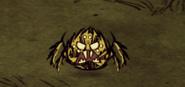 Warrior Spider